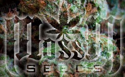 Moss M Genetics