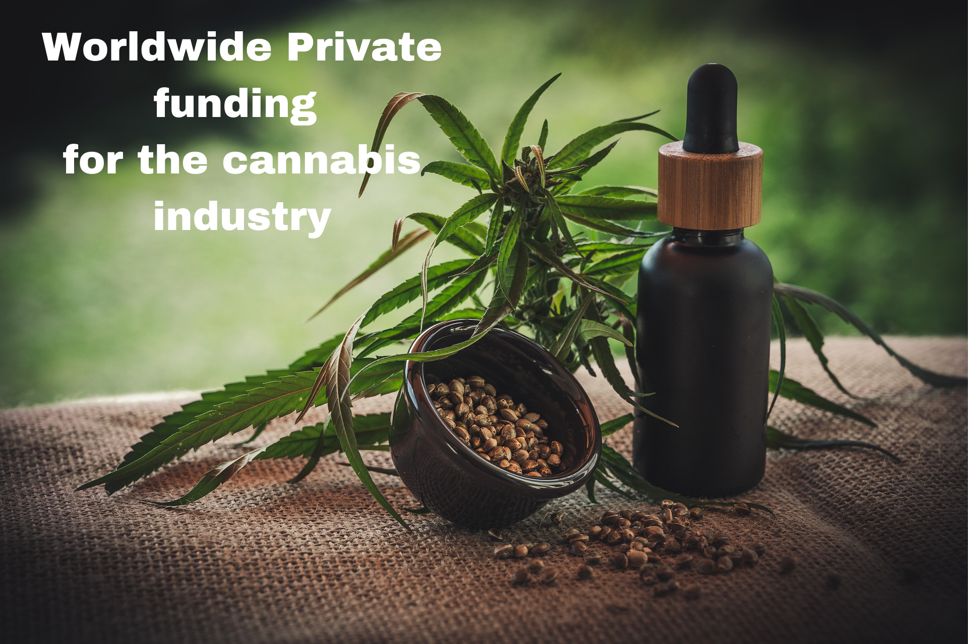 Cannabis Private Funding